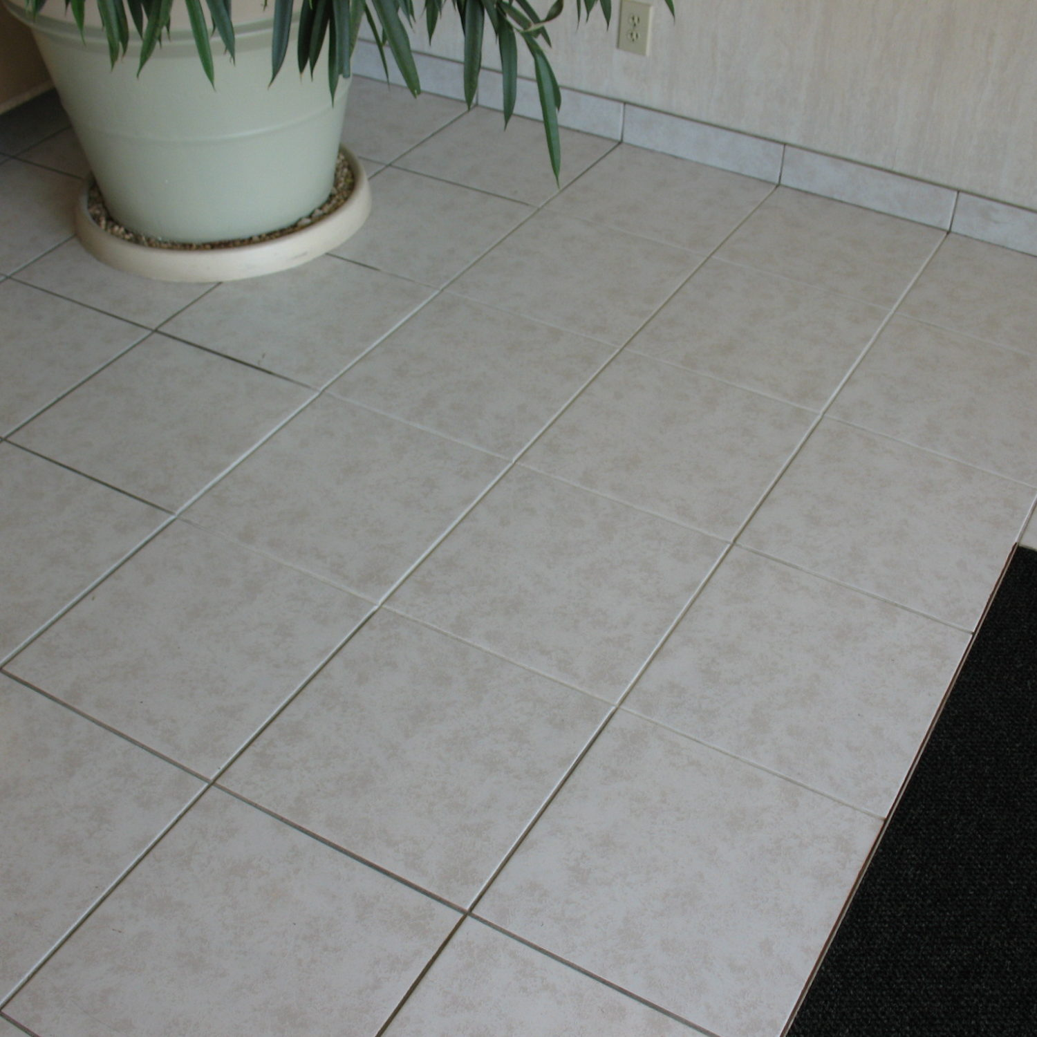 commercial tile cleaning tampa fl